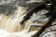 Taquamenon Falls 3