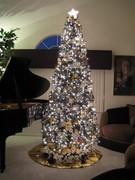 Oh Christmas Tree, My Christmas Tree...
