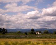 Farm-on-Sauvie-Island