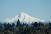 Oregon Life