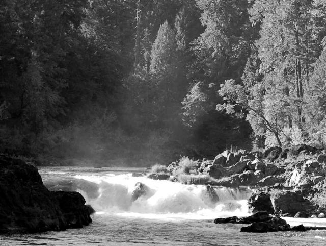 Rouge River 6 B&W2