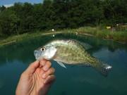 fishing 012