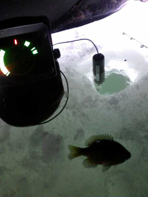 deep water on 3 inches