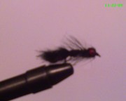 My Flies