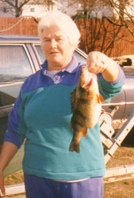 nc-yellowperch state record..Caught on Indiantown Creek