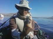 Past two Lake Perris Trips