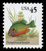 1 Pumpkinseed Sunfish stamp