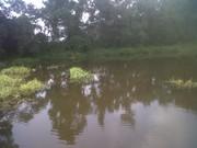Huntsville-20120525-00107