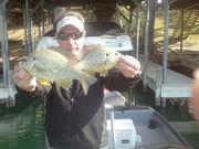 fish caught on jig/trailer