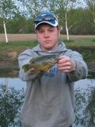 8.5 in. Green Sunfish (4-27-12) (2)