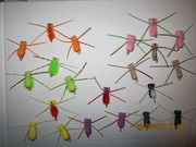 Gurgle spiders 002