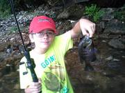 Etowah River Shellcracker