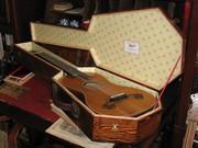 Guitar in Coffin Case