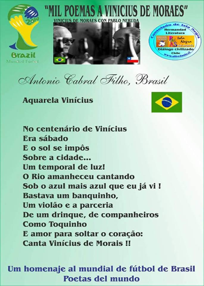 AQUARELA VINICIUS - ANTONIO CABRAL FILHO - RJ