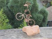 Mt Tam Triple Crown Trophy, 2011 1st Place