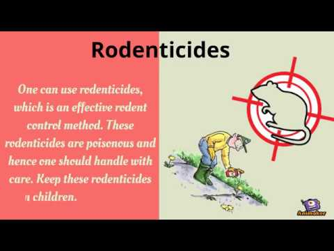 Methods of effective rodent control