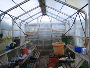 Glasshouse cleaning