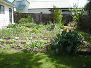The spring vegetable garden