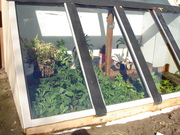 Cold Northern (Idaho) Greenhouse