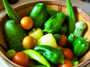Okra, Cucumber, Banana Peppers, Bell Peppers, Sweet Peppers, Jalapenos, Cherry Tomatoes