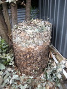 Leaf mould bin1