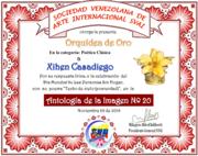 CERTIFICADOS DE LA ANTOLOGÍA DE LA IMAGEN Nº 20. SVAI
