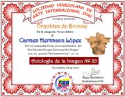 Diploma antologia IMAGEN 20SVAI
