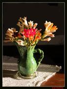 Σύνθεση με λουλούδια.