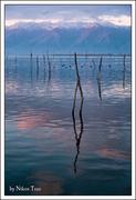 Λίμνη Κερκίνη Νο1