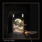 Ροδος Μεσαιωνικη Πολις. Η περιπολος της πυλης Daboise