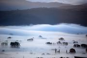 Πολύ ομίχλη στα Γιάννενα
