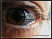 Through the eye.....