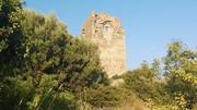 Πύργος της Απολλωνίας