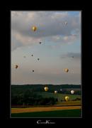 Kites + Balloons