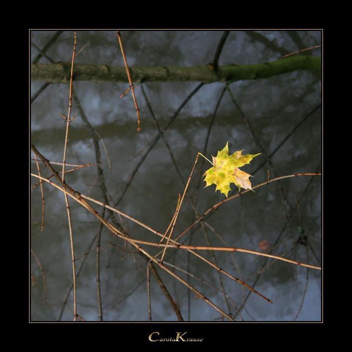 Autumnal Remainder