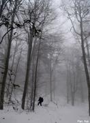 Στο πνευμα του χειμώνα