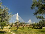 Γέφυρα στο πράσινο