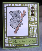 Koala with Rubberband Eucalyptus