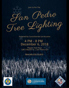 San Pedro Tree Lighting