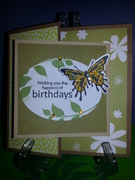 GKD B-day Special Fold with Butterfly