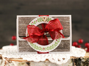 Christmas Gift Card Holder1 by Laurie Schmidlin