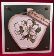 Framed Apple Blossom