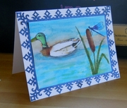 Teal Duck (550x468)