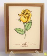 Yellow Rose Sympathy