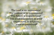 Experience, experiment, expectations