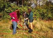 Students finishing planting a tree