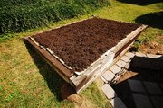 The newly mulched garden