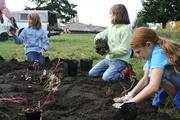 Roosevelt School Garden Workparty