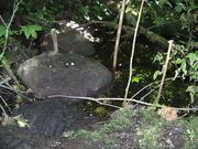 Bunker Spawn