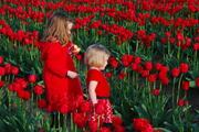 My girls in the tulip fields